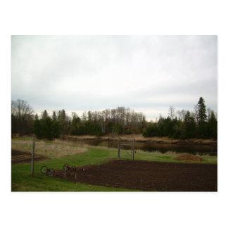 Cloudy Spring dawn after rain Postcard