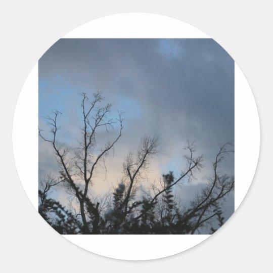 Cloudy SunSet Tree #2 Classic Round Sticker