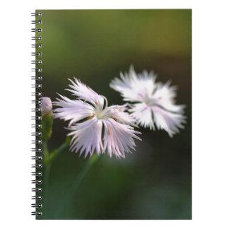 Clove Pink (Dianthus caryophyllus) Notebook