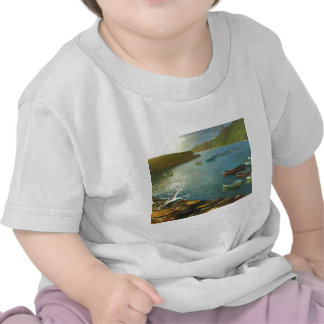 Clovelly - mirando hacia fuera camisetas