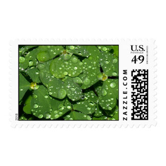 Clover 002 Postage