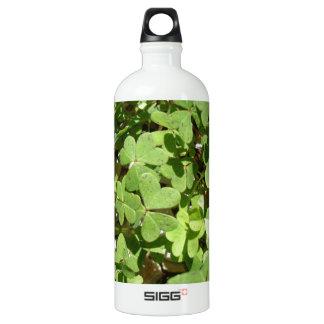 Clover Aluminum Water Bottle