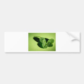 clover bumper sticker