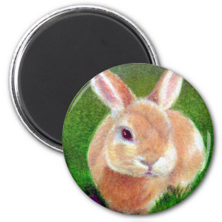 Clover Bunny Magnet
