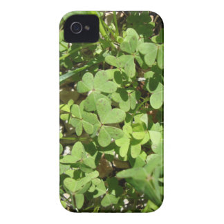 Clover iPhone 4 Cover