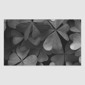 Clover leaves, infrared photo rectangular sticker