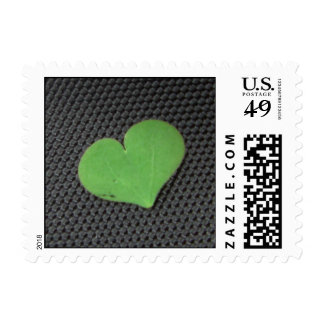 Clover Love Stamps