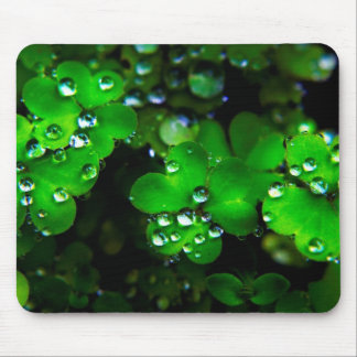 Clover Mouse Pads