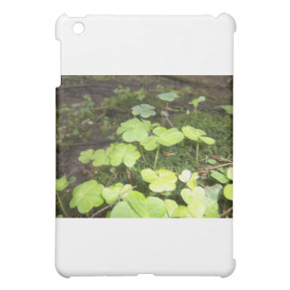 Clover Patch Case For The iPad Mini
