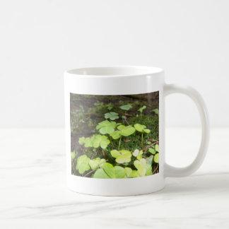 Clover Patch Coffee Mug