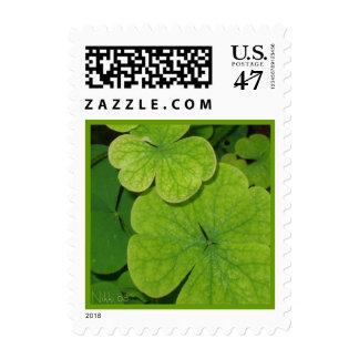 Clover Postage Stamp