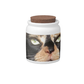 Clover the Calico Candy Jar