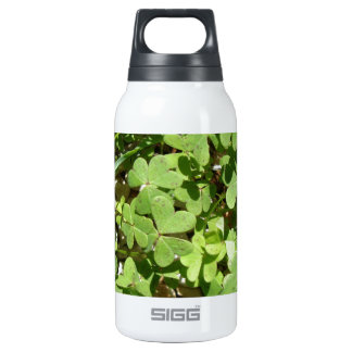 Clover Thermos Bottle