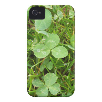 Clovers and Dew Drops iPhone 4 Cases