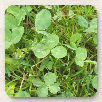 Clovers and Dew Drops Coasters