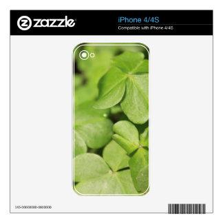 Clovers iPhone 4S Skin