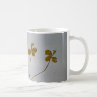 Clovers luck clover Vergänglichkeit cup