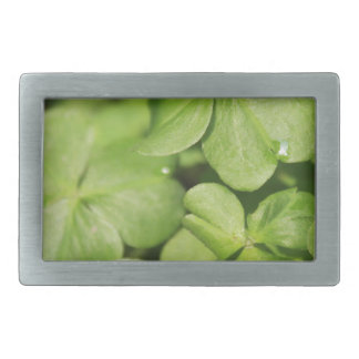 Clovers Rectangular Belt Buckle