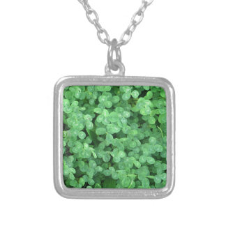 Clovers Silver Plated Necklace