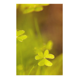 Clovers Stationery