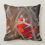 Clown anemonefish 2 throw pillows