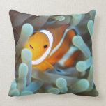 Clown anemonefish 3 throw pillows