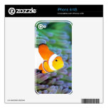 Clown anemonefish decal for the iPhone 4