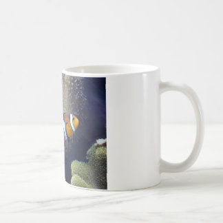 clown fish, 2 coffee mug