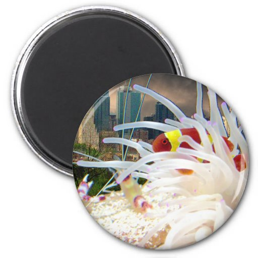 Clown Fish 2 Inch Round Magnet