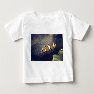 clown fish, 2 t shirts