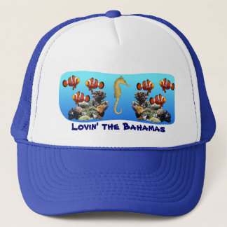 Clown Fish and Seahorse Hat