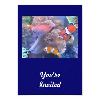Clown Fish Aquarium Card