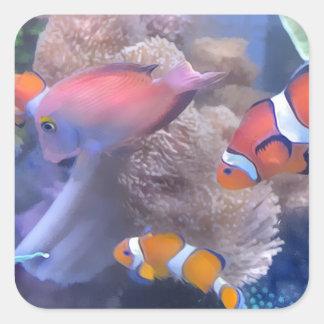 Clown Fish Aquarium Stickers