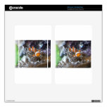 Clown Fish Decals For Kindle Fire