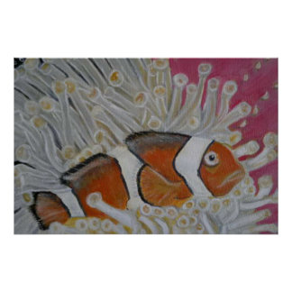 clown fish in coral poster