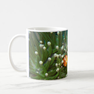Clown Fish in the Coral Garden of Sipadan Classic White Coffee Mug