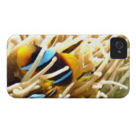 Clown Fish iPhone 4 Case-Mate Case