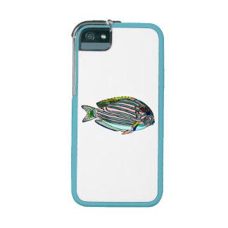 Clown Fish iPhone 5/5S Cases