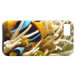 Clown Fish iPhone 5 Covers