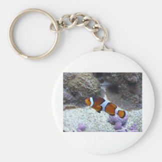 clown fish keychain