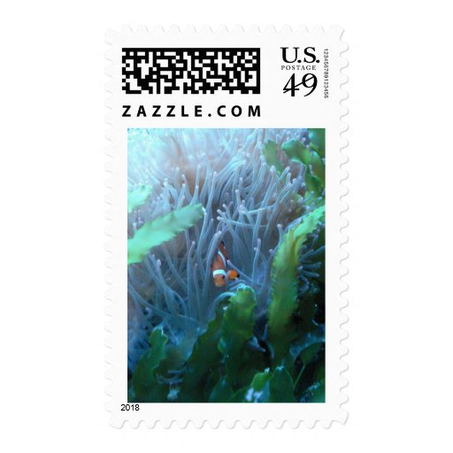 Clown Fish Postage Stamps