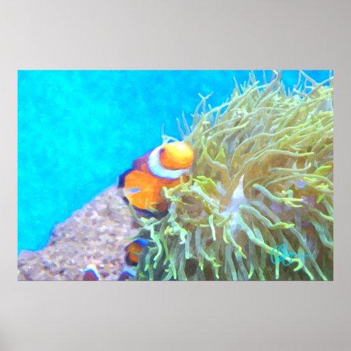 Clown Fish Print
