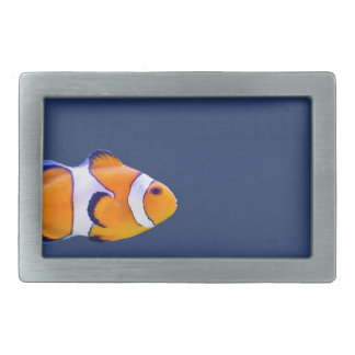 Clown fish swims in blue water with pink anemone belt buckle