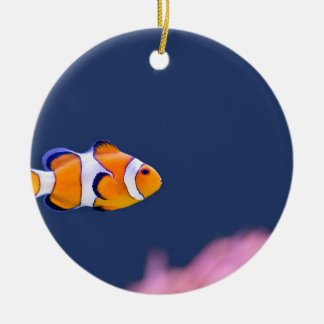 Clown fish swims in blue water with pink anemone ceramic ornament
