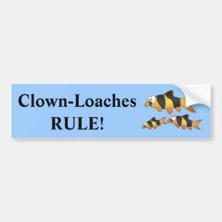 Clown loach family car bumper sticker
