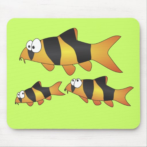 Clown loach family mouse pad