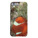 Clownfish 2 funda para iPhone 6 barely there
