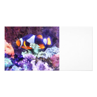 Clownfish and Coral Personalized Photo Card