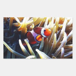Clownfish Anemonefish Pegatina Rectangular