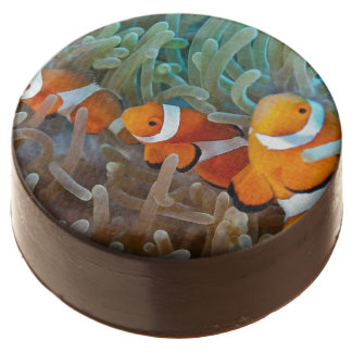 Clownfish Chocolate Dipped Oreo